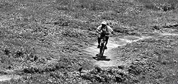 Mountain biking image